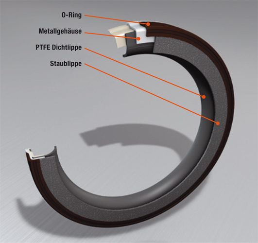 Focus Ring Band